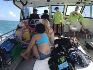 Boat out to reef
