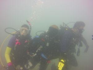 Volunteers underwater with bags