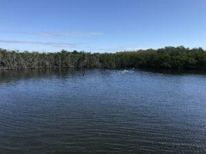 Bayside Snorkel location